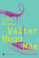 Resenha: O Filho de Mil Homens - Valter Hugo Mãe