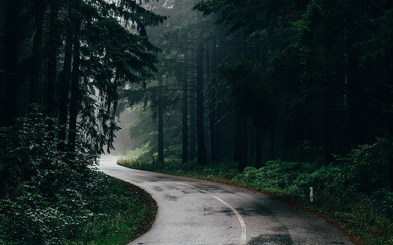 Na Natureza Selvagem: livros lidos por Chris McCandless (Alexander Supertramp)