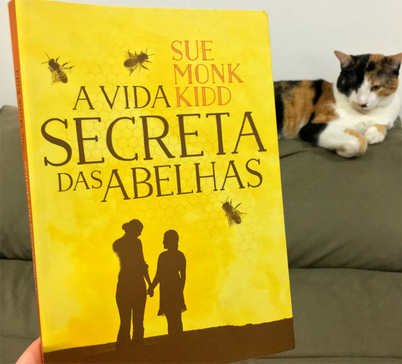 Resenha: A Vida Secreta das Abelhas - Sue Monk Kidd