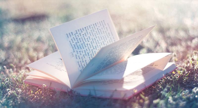 14 livros românticos para você se apaixonar